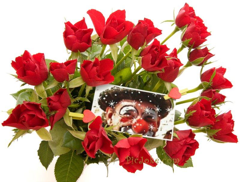 Auguste, la fleur des clowns