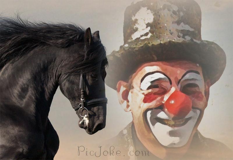 clown aude (13)
