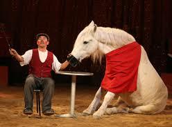 Carlos Savadra et son cheval comique sont des piliers...